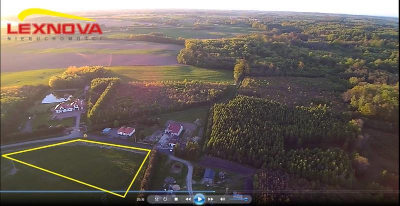 Działka siedliskowa, Wilkowo